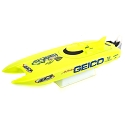 Miss Geico 17-inch Catamaran Brushed: RTR
